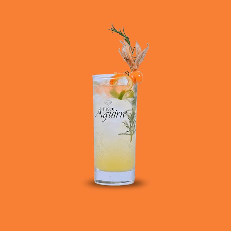 mandarina-tonic